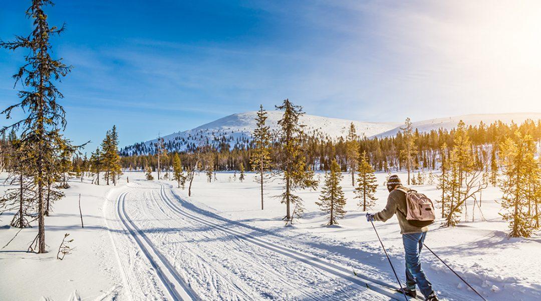 Artikelbild_ski
