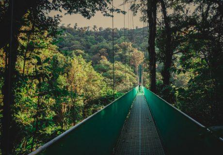 CostaRica_HangingBridges_03