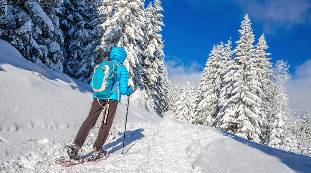 Lappland Wintersport