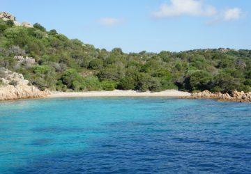 Rosa Strand von La Maddalena