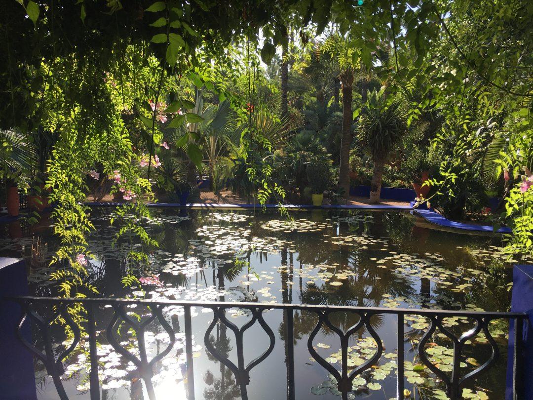 Teich im Jardin Majorelle von Marrakesch